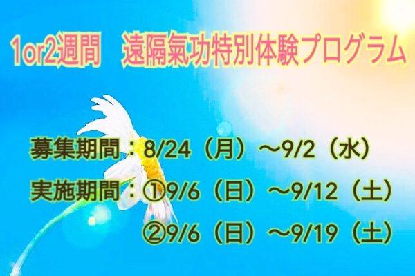 1週間・2週間、遠隔氣功特別体験プログラム☆彡
