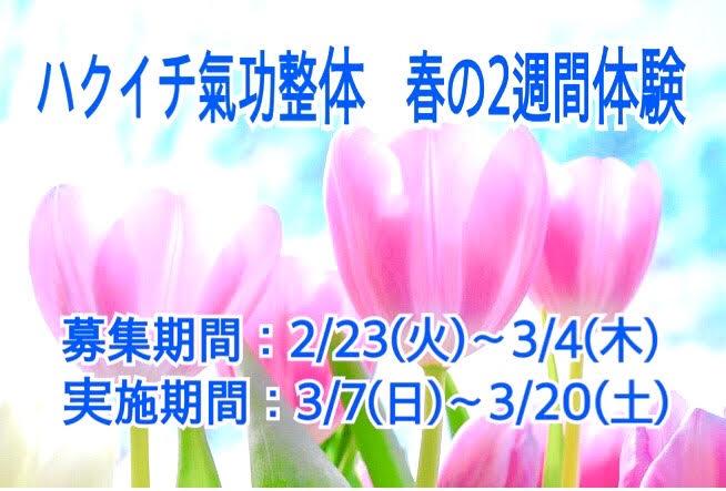 ☆3月☆ 春の2週間体験